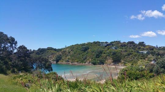 beach-waiheke-island